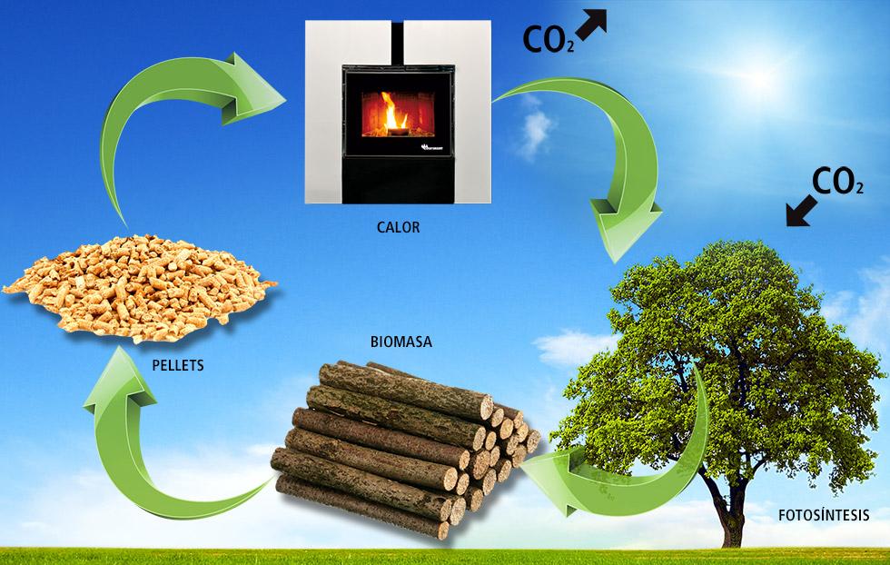 Servicio Técnico oficial Ecoforest